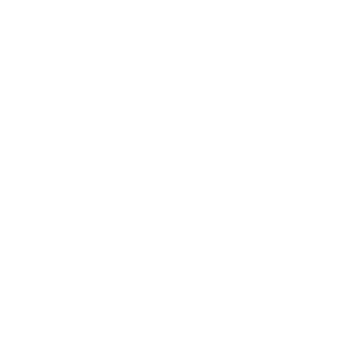 Bitmark: Issue bitmark.