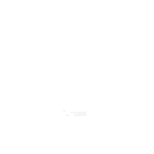 New Territory Fitness