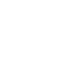 WordPress: Any new post.