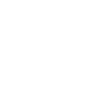 Blue by ADT: Turn on a light.