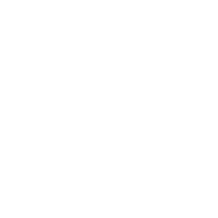 Best Buy: New product in category.